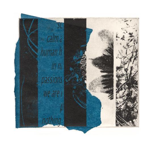blue-passion-3a