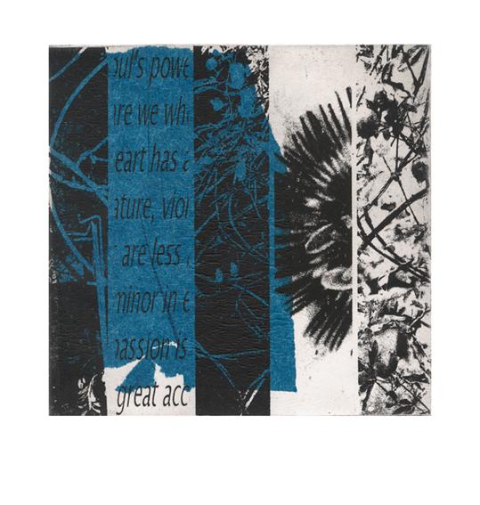 blue-passion-3b