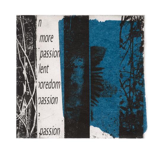 blue-passion-3e