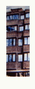 reflected-cranes-colour-version-3