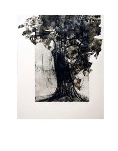 tissue-tree-1