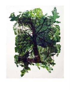 tissue-tree-3